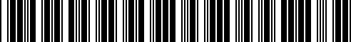 Barcode for 95112313103